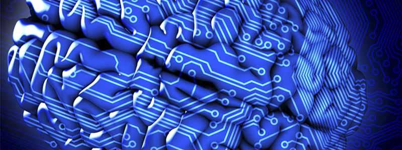 blue-circuit-brain