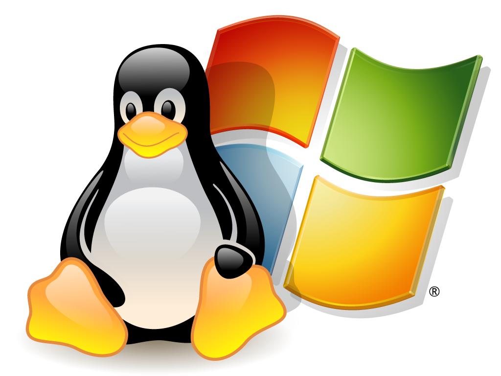 Hosting Linux y Windows