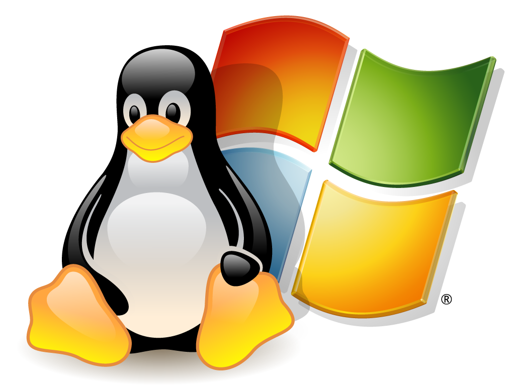 servidor virtual linux windows